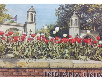 Indiana University Sample Gates LIMITED EDITION Pen and Ink and Watercolor Art Print Illustration - Graduation Gift, Alumni
