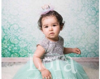 Silver Top, Mint Tulle Birthday Dress