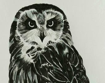 "Short eared owl black and white Giclee art print from original artwork by Ruth Dagger 8""x10"""