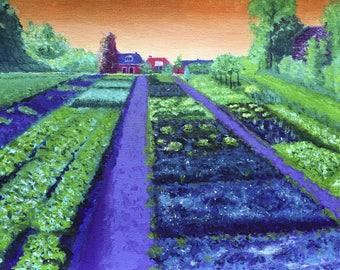 Vegetable garden in Holland