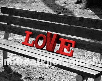 Love Bench, Nature, Black and White, Wall Art