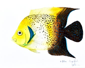 Art Picture Paint Painting Watercolor Blue Angelfish