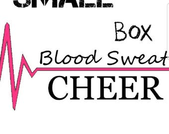 January Blood Sweat Cheer Small Box