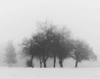 Winterscape - Fine Art Print