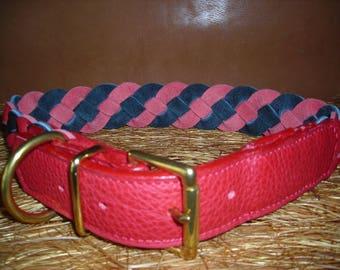 Big Buffalo braided leather dog collar.
