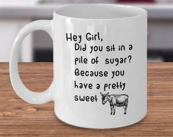 Hey Girl pickup line, Funny Coffee Mug, Dad, Brother, Husband, Boyfriend Gift
