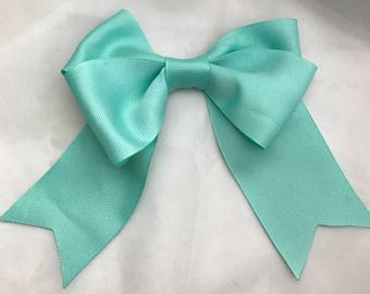 Tails down Turquoise bow