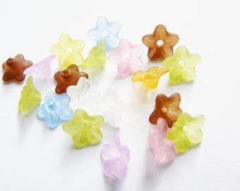 X 10 Lucite flowers