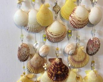 Indoor / outdoor exotic seashell wind chime