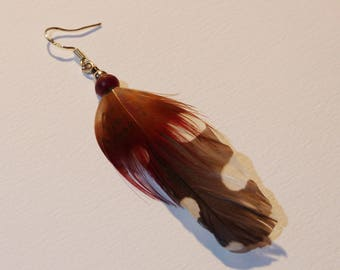 Pic Epeiche and Golden pheasant feather single earring