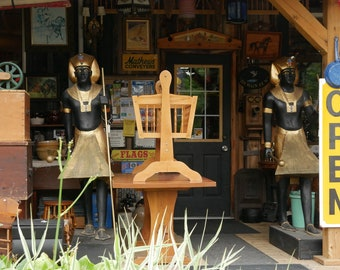 Antique Store Guardians