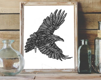 Raven pen and ink illustration print limited edition signed and numbered