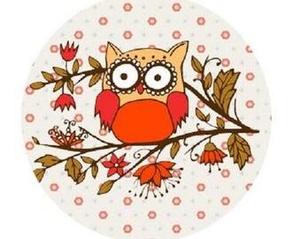 pretty 20mm OWL cabochon