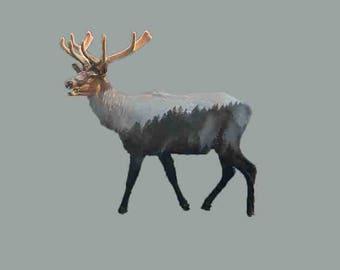 Double Exposure Elk