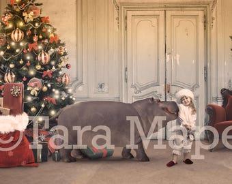 Hippopotamus For Christmas Digital Background