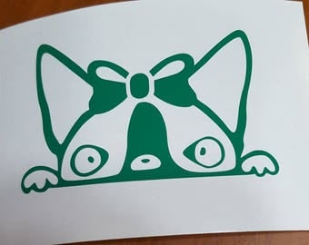 Boston Terrier with Bow Decal
