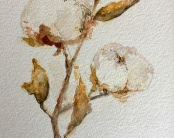 Original Cotton Watercolor-8x10