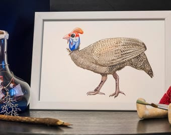 GUINEA FOWL watercolor painting