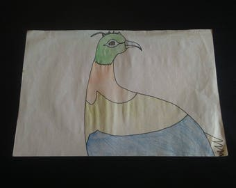Himalayan Monals bird