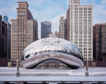 Snowy Bean Photograph Chicago