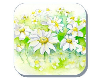 Daisys British Wild Flower Collection (Corked Back). From an original Sheila Gill Watercolour Painting