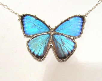 Rita's Necklace - RESERVED- Blue Morpho Butterfly Necklace