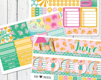 June Monthly Planner Sticker Kit - Monthly Calendar Stickers for use with ERIN CONDREN LIFEPLANNER™