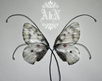 Fairy Wings - Gray Butterfly wings GR2 -  For OOAK Art Dolls