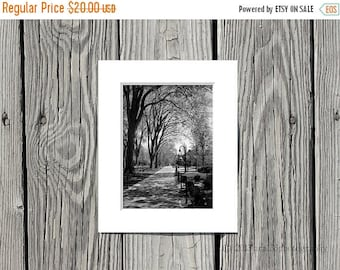 50% OFF SALE Black and White Photograph, Penn State Photo, Elm Trees, Path, Campus, 5x7 inch Print Matted to 8x10 inches -Timeless