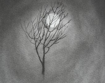 I Lost My Leaves but Not My Life ORIGINAL CHARCOAL drawing