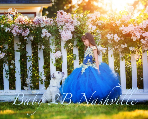 Smoke Blue Dress Gold Dress Flower Girl Dress Princess Dress Tulle Dress Lace Dress Wedding Dress Toddler Dress Tutu Dress Girl Dress