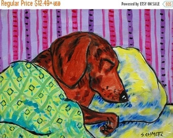 20% off Dachsund Sleeping with green blanket signed dog art print