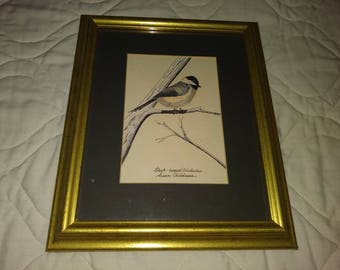 Framed hand colored print of a Chickadee bird - 8 x 10