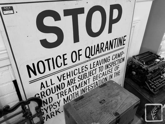 """Notice of Quarantine,"" Rosie's Vintage, Huntington, New York, 2017."