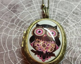 Antique brass Locket with Vintage Owl 40x30 glass cabochon necklace