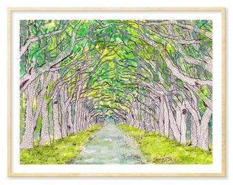 Savannah Prints, Wormsloe Plantation, Watercolor Art Print, Savannah GA Art Prints, Savannah Souvenir, Oak Trees, Spanish Moss, Lowcountry