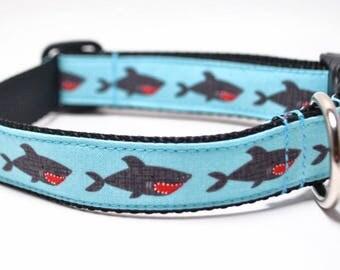 Shark Dog Collar / Shark Attack / Martingale or Buckle / Nautical Dog Collar / Jaws