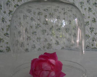 Pretty Vintage Glass Cloche Perfect for Seasonal Displays and Entertaining