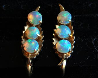 Vintage Opal and 14K Gold Screwback Earrings - 3 Stones Prong-Set on Each Earring Against Leaf Background - 3.76 grams - Fiery Opals