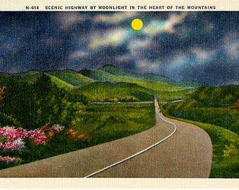Vintage Postcard - A Moonlight Drive in the Mountains (Unused)
