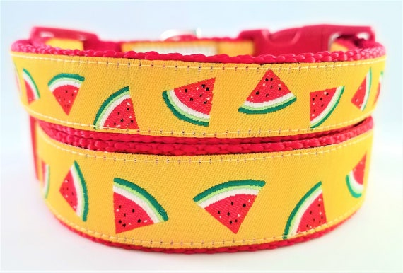Watermelon Dog Collar, Handmade, Adjustable, Summertime, Large dog collar, Small dog collar, Martingale, Pet Lover