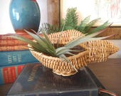 Vintage Woven Wicker CONCH Shell Basket Air Plant Succulent planter ~ Boho Beach Cottage Style