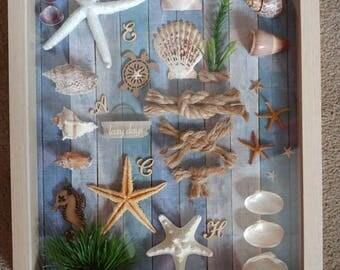 Beachcomber Seaside seashore Ocean Beach seashells starfish shadow box