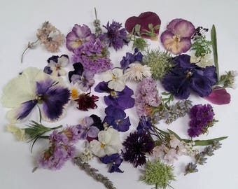 Wedding Confetti, Real Wildflowers, Wedding Decoration, Dry Flowers, Bulk, Aisle Decor, Tossing  Flowers, Reception 50 US cups of Confetti