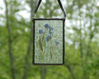 Pressed flower suncatcher, stained glass, Forget-me-not flower suncatcher decoration, real dried flowers, gift for her, nature inspired