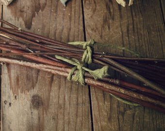 Natural 'Reeds' for Oil Diffuser - Twigs, Maple, Alder, Wild
