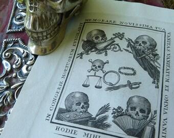 Antique 1800s Memento Mori Vanitas, Memento Mori Curio, Queen of the Inbetween, Midwife, Seer, Visionary, offered by RusticGypsyCreations