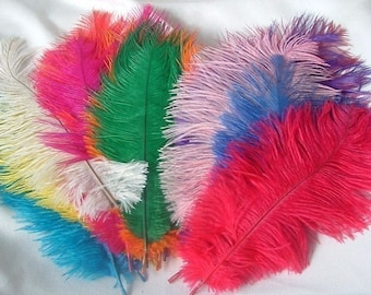 Lot of 24 Ostrich Feathers