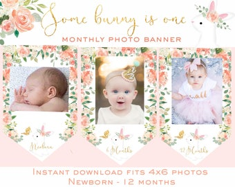 SOME BUNNY is ONE Monthly photo banner Milestone banner Gold Peach pink bunny first birthday bunny 1st birthday watercolor printable