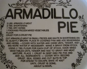 Pie Plate , Armadillo Recipe Dish, Kitschy Glazed Bakeware, Cottage Chic Cooking